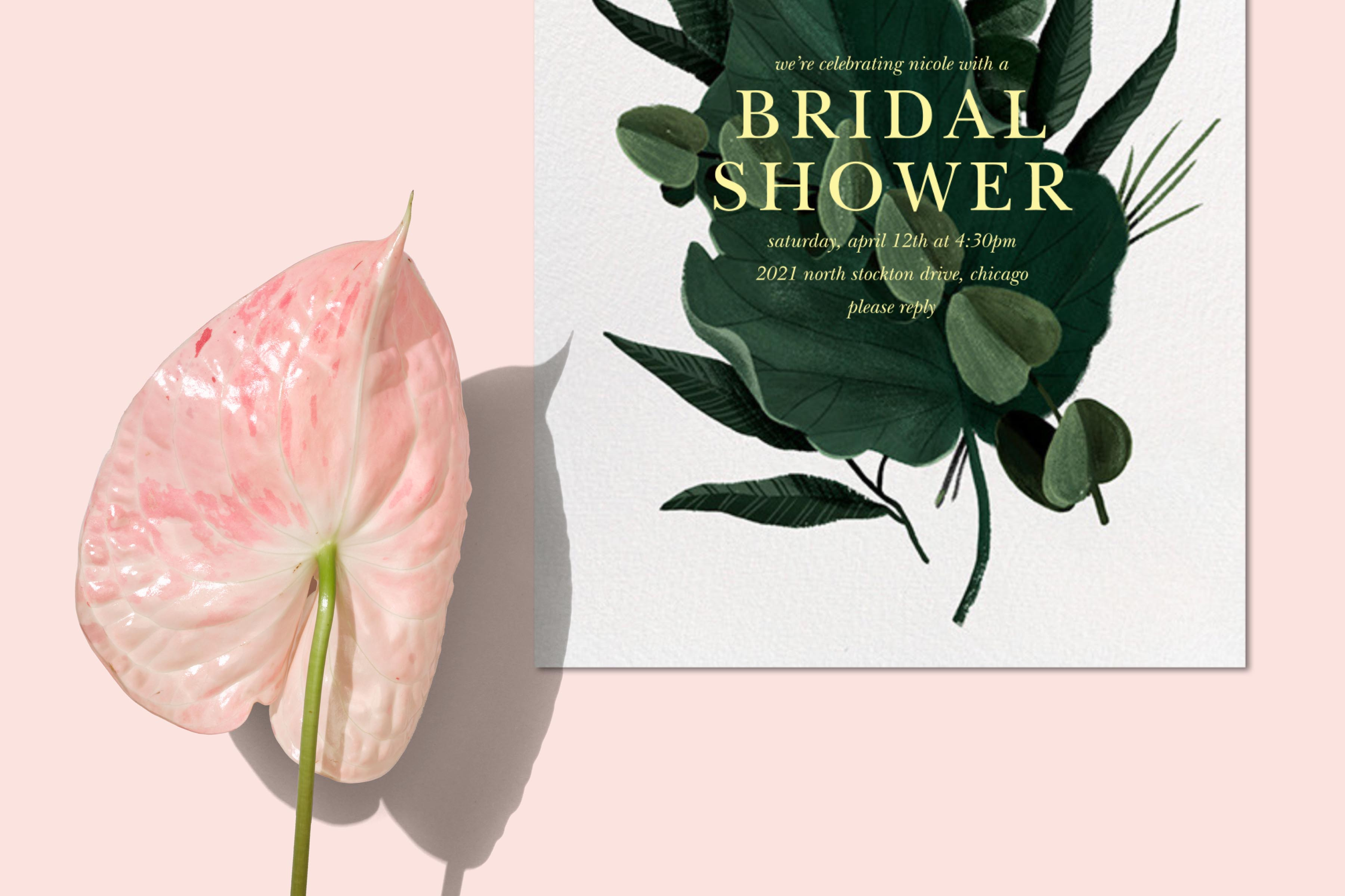 Classic bridal shower decor, supplies, gifts, and party favors