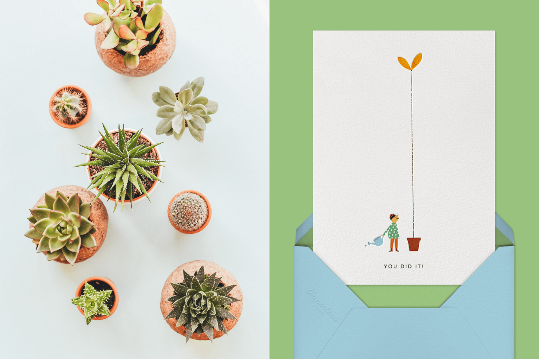 Left: Mini planters with succulents. Right: Growing (Blanca Gómez) by Red Cap Cards for Paperless Post