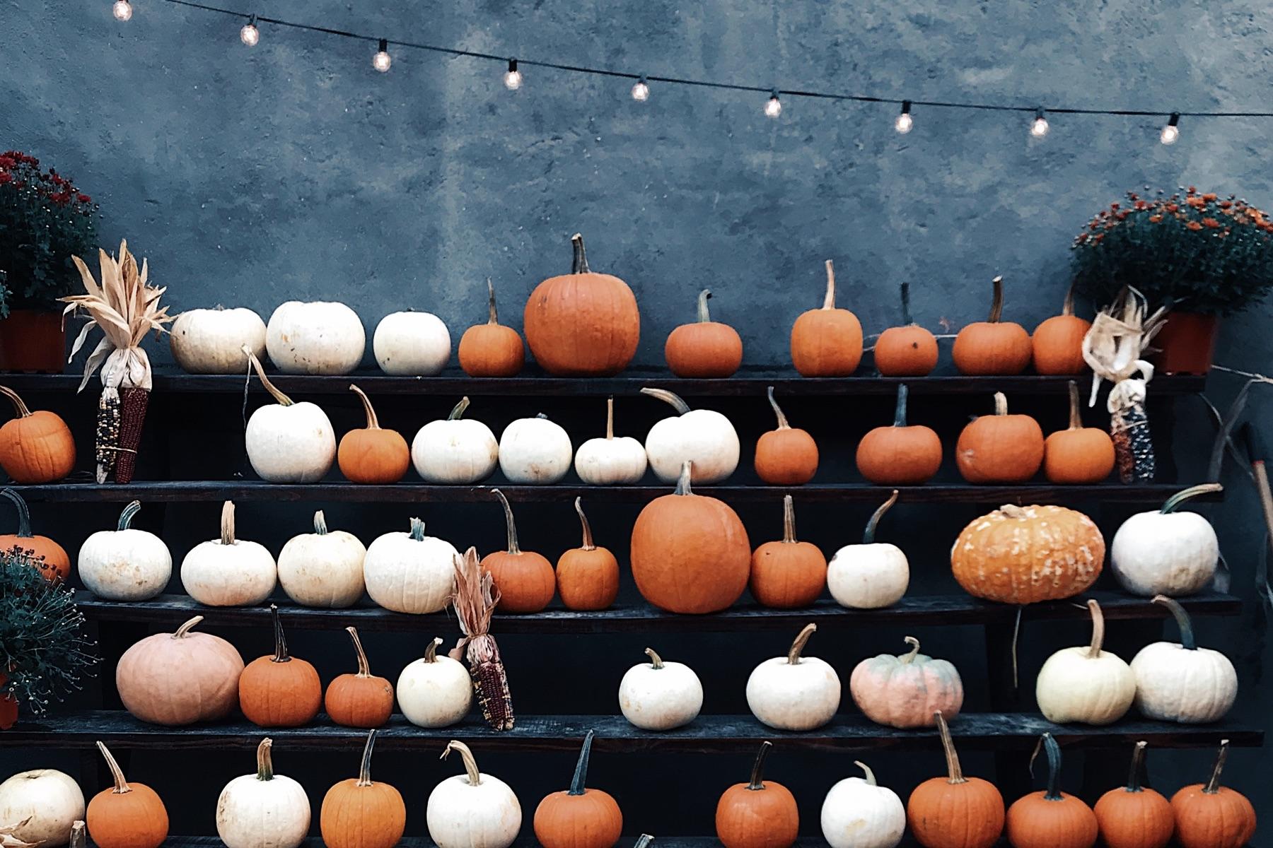 20 fall party ideas to celebrate the season